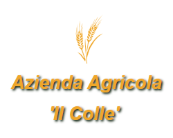 Logo Holiday Farm Il Colle